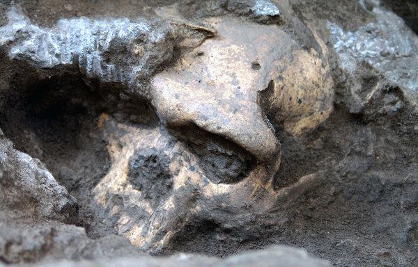 Skull 1.8 million years old found in Georgia.